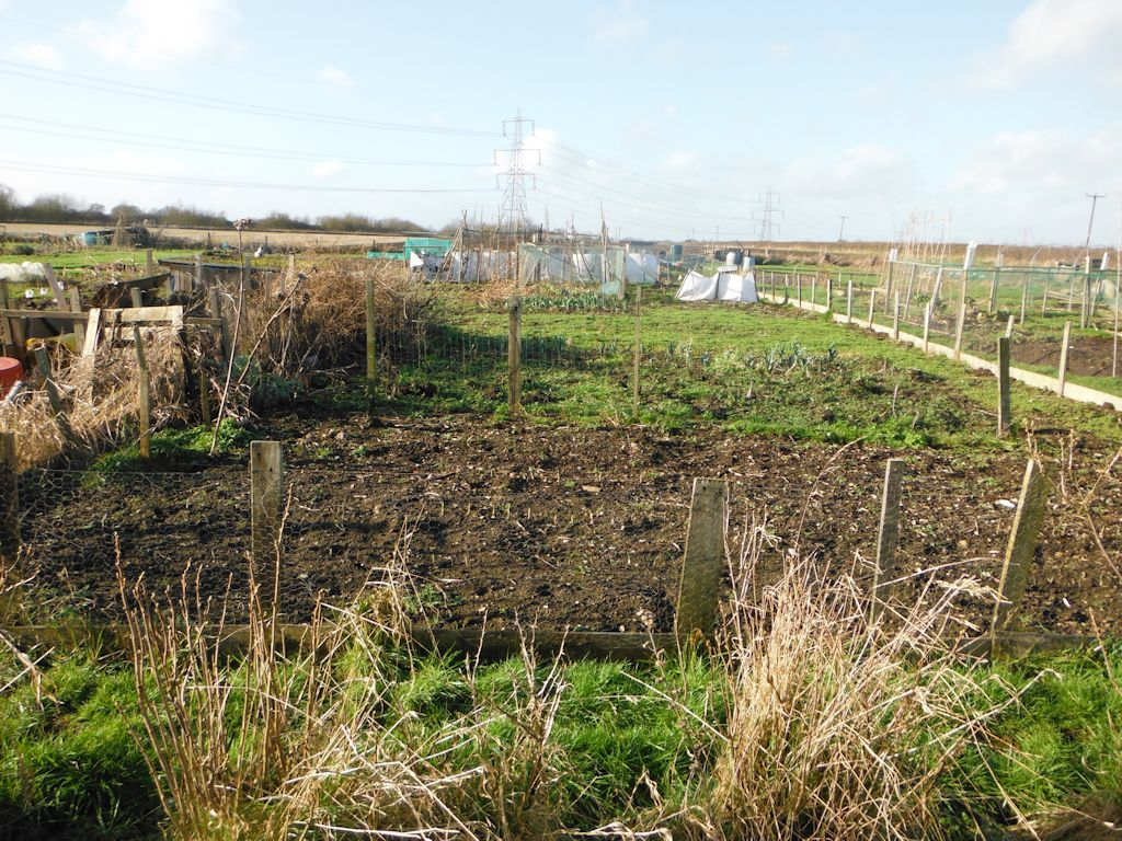 allotment up view