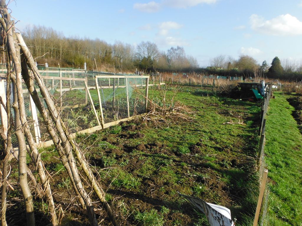 allotment down view